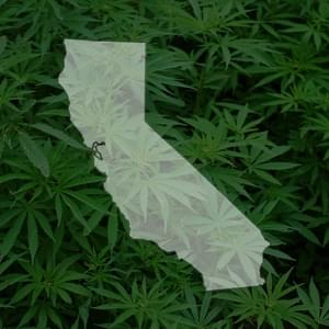 California Cannabis Advertising Law Change