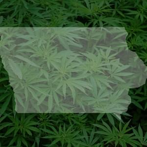 Iowa should fix medical marijuana law
