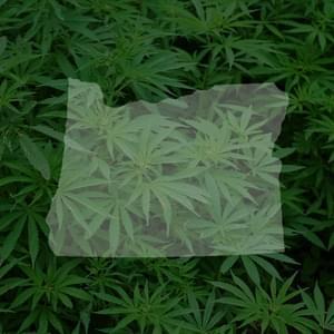 Portland Marijuana Seeds