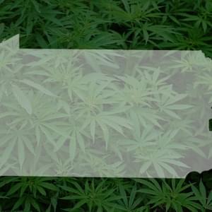 Carlisle Marijuana Dispensaries | Where's Weed