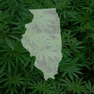 Study: Illinois' legal marijuana demand would outpace supply