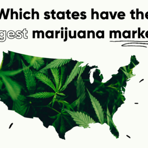 What States Have the Biggest Marijuana Markets?