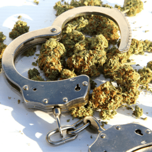 Why Are People Still Going To Jail Over Marijuana Possession?