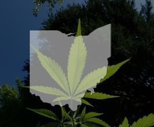 Application process begins for Ohio doctors to prescribe medical marijuana