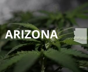 Arizona AG Wants Court to Reinstate Ban on Medical Marijuana on College Campuses
