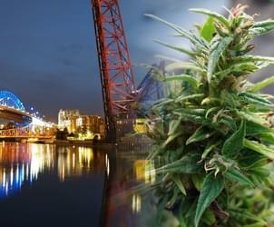 Cleveland rethinking ban on medical marijuana growing sites