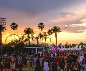 Coachella 'all in' with medical marijuana cultivation