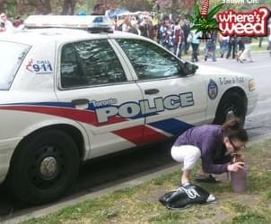 Crazy Canadian Smokers