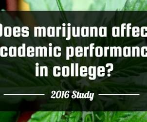 Does marijuana affect academic performance in college?