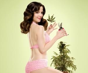 Eight Fascinating Ways People of the Past Have Used Marijuana to Enhance Sex