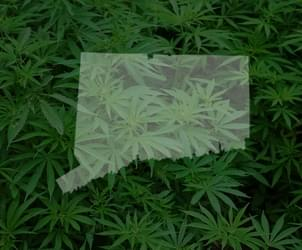 Hearing on recreational marijuana sales postponed