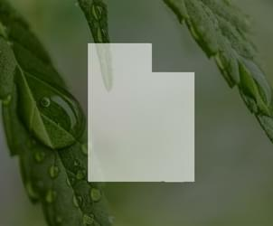 Hurdles expected for Utah's medical marijuana research law