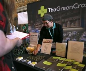 Job seekers crowd into employment fair for marijuana industry