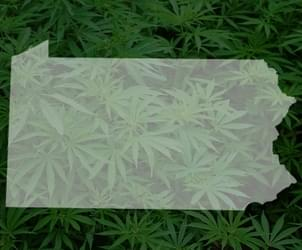 Judge puts hold on Pennsylvania's plan for medical marijuana research