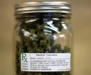 Major hypocrisy: US govt-funded agency admits marijuana can kill cancer cells