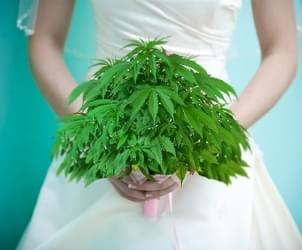 Marijuana meets matrimony at Cannabis Wedding Expo