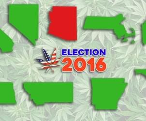 Marijuana wins big on election night