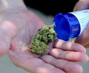 Mass. patients allotted more medical marijuana