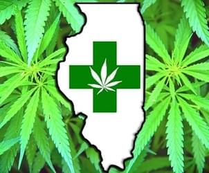 Medical marijuana board rips Rauner's rejections