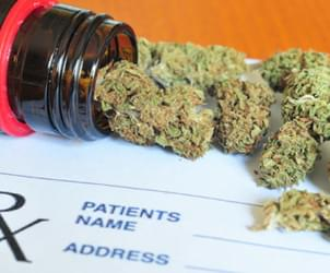 Medical Marijuana Licensing Starts Monday in Maryland
