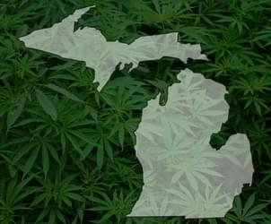 Michigan drive to legalize marijuana has 100,000 petition signatures so far