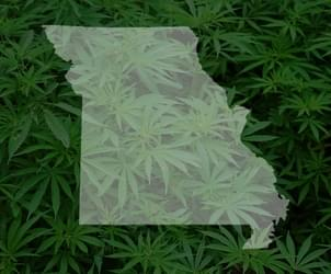 New bill would allow for use, sale and growth of marijuana in St. Louis
