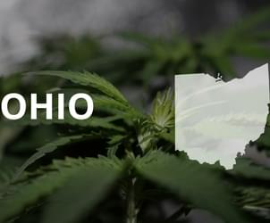 Ohio docs writing recs for patients to buy medical marijuana in Michigan before rules set