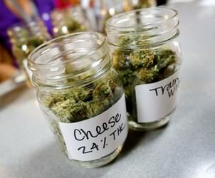 Retail marijuana sales begin in Salem