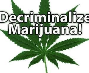 Survey: 79% Of U.S. Mayors Support Marijuana Decriminalization