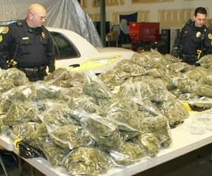 Traverse City Tackles Marijuana Legalization Issue