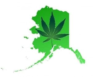 Weed is legal in Alaska, but when will it go on sale in Anchorage?