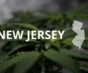 Why marijuana activists are worried about NJ's legalization plan