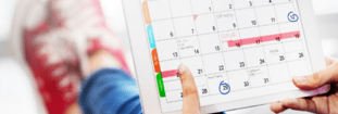 Creating the Perfect Cannabis Content Calendar