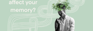 Does Cannabis Affect Your Memory?