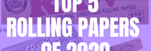 The Top 5 Rolling Papers of 2020