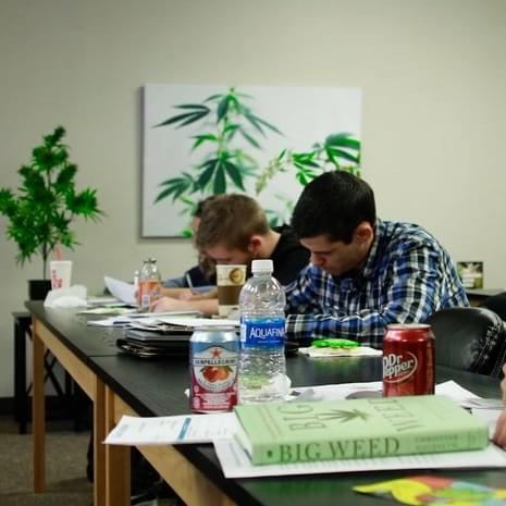 Cleveland Cannabis College opens to educate future Ohio medical marijuana workers