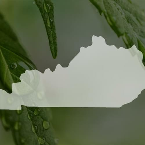 Lawsuit challenges Kentucky's medical marijuana ban