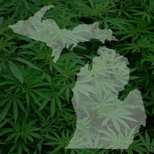 Many businesses see green in Michigan's upcoming vote on recreational marijuana