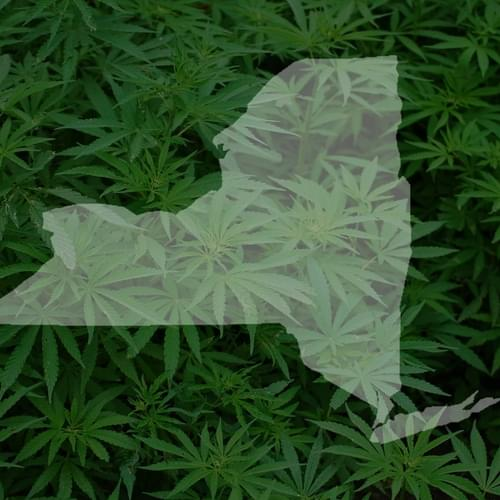 New York: the Marijuana Regulation and Taxation Act (MRTA)