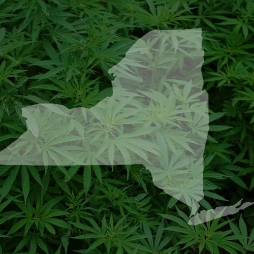 NY Officials Are On A Marijuana Legalization Listening Tour