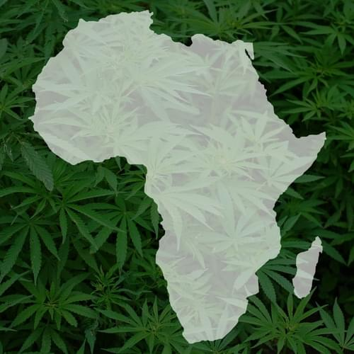 South Africa legalizing pot at home is great news for its neighbors