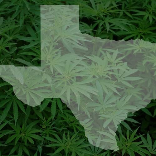 Texas Lawmaker Files Marijuana Decriminalization Bill