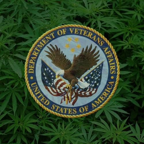 VA Will Explore Medical Marijuana, But Only If Federal Law Changes, Secretary Says