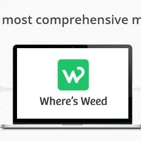 Where's Weed unveils Menu Syndication for business owners