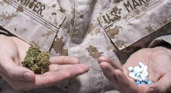 Colorado Springs organization offers free marijuana to veterans