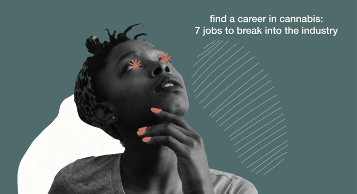 Find a Career in Cannabis: 7 Jobs to Break Into the Industry