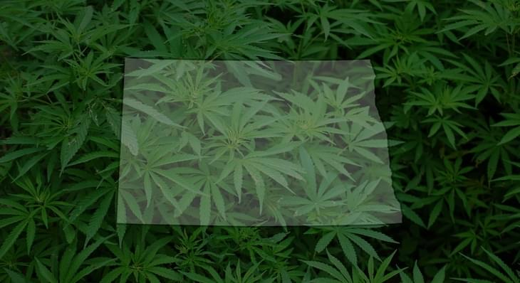 ND recreational marijuana group submits signatures hours ahead of deadline