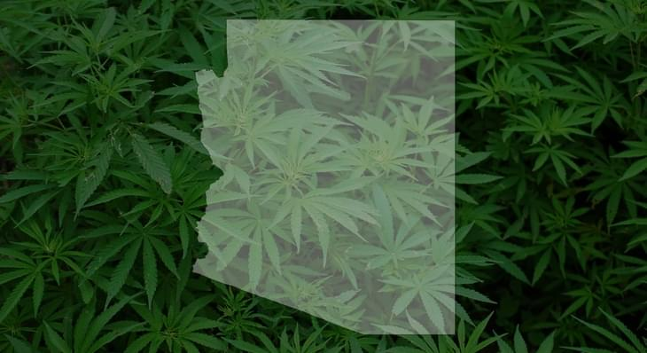 Testing for medical marijuana contaminants advances
