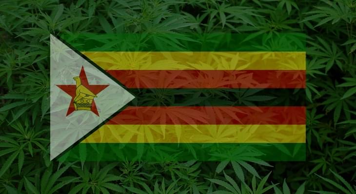 Zimbabwe Becomes Second African Country to Legalize Medical Marijuana
