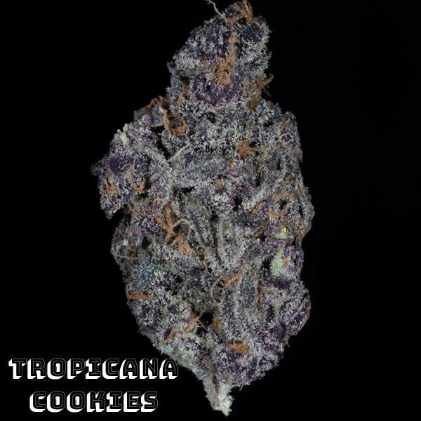 2019's Top 5 Marijuana Strains 3